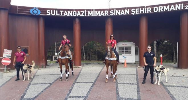 Polis Atlı Birlikleri Sultangazi Şehir Ormanları'nda
