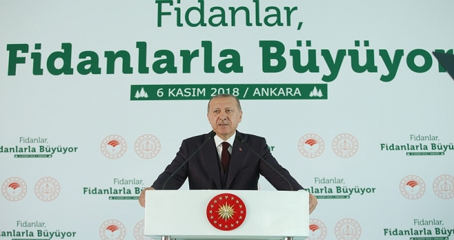 Cumhurbaşkanı Erdoğan: Tabiata bakış açımızı düzeltmezsek dünya yaşanılır olmaz