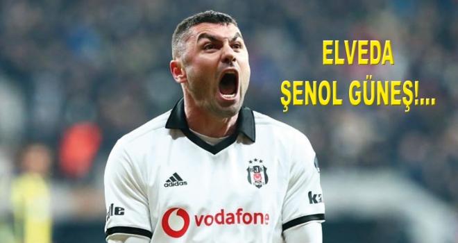 ELVEDA ŞENOL GÜNEŞ